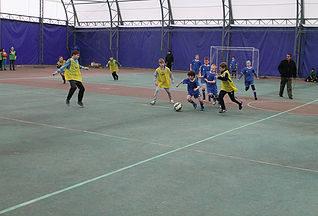 Соревнования по мини-футболу среди мальчиков и девочек, посвященные Дню защитника Отечества х. Николаенко